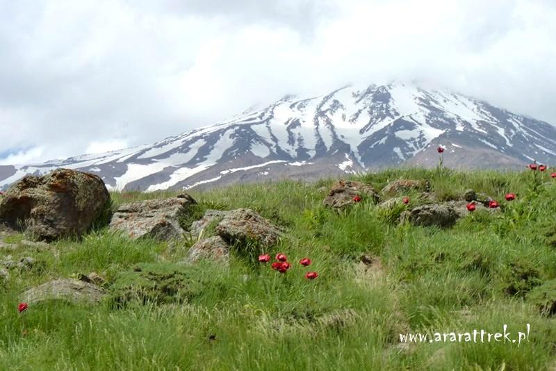 Demawend_w_Iranie