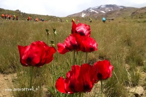 Mount_Damavand_2015 (42)