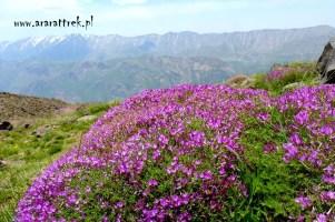 Demawend_w_Iranie (6)